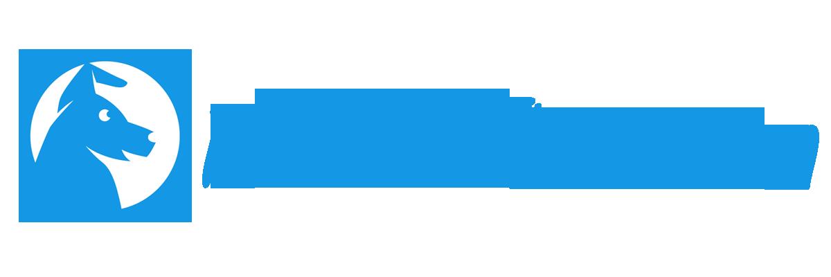 Blog chiens et animaux